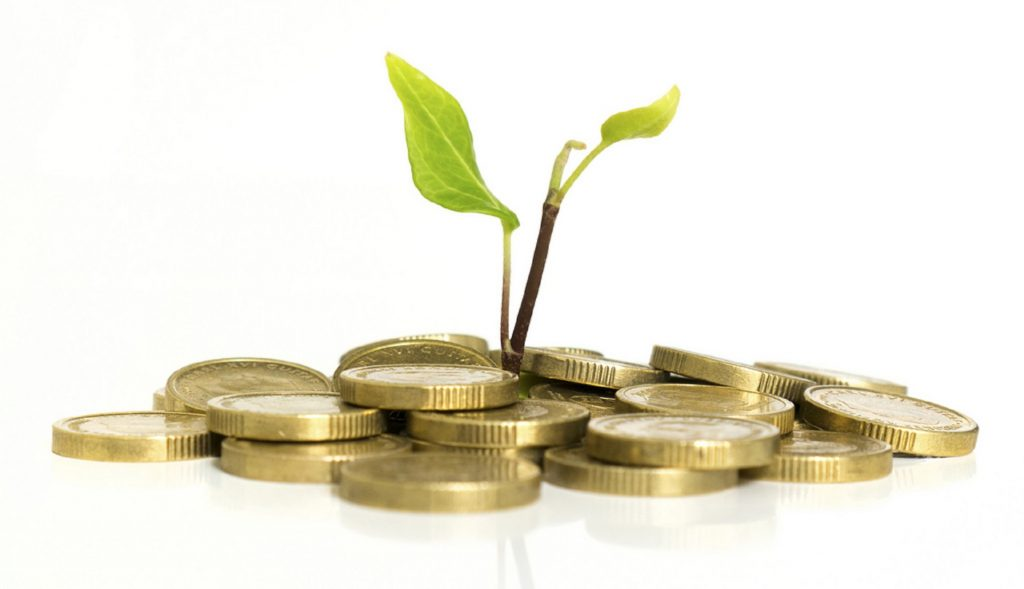 coins with plant growing, small business growth