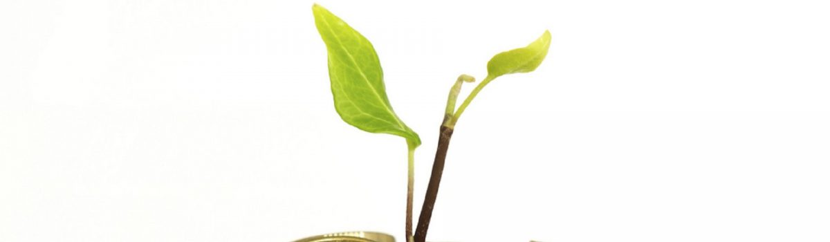 Alternative Sources Of Finance For Early Stage And Growing Businesses